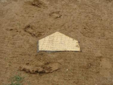 ProCage Wood Filled Home Plate