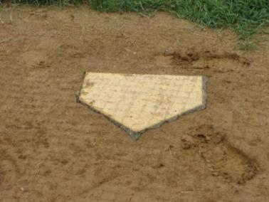ProCage Bury All Professional Wood Filled Home Plate