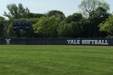 athletic field windscreen